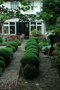 Lange tuin met veel struik