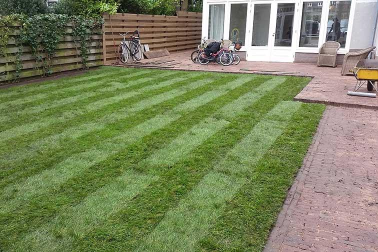 Een basic tuin pas aangelegd